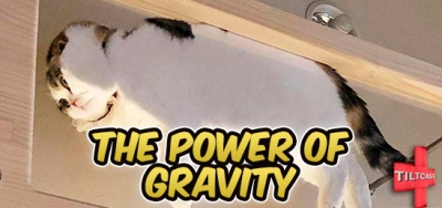 S10 EP 404 The Power of Gravity