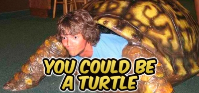 S10 367 You Could Be A Turtle